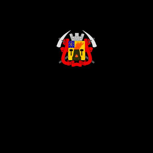 Дитяча футболка з гербом міста Луганськ. Ціна fc83c5eeef21b